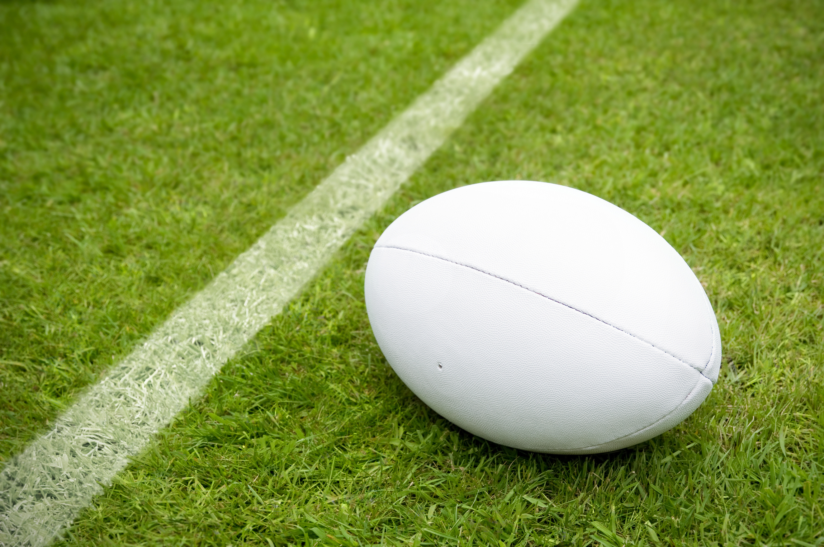 Landscape Garden Rugby : Rugby ball near try line on pitch