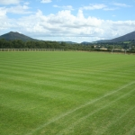 Soccer pitch Enniskerry 2011