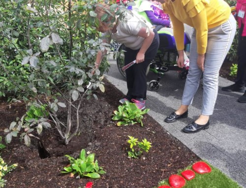 Bringing the joy of gardens to those who need it most