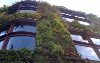 green wall 2 facade wiki